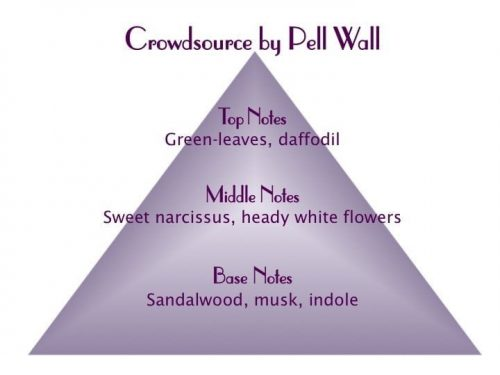 Crowdsource Scent Pyramid