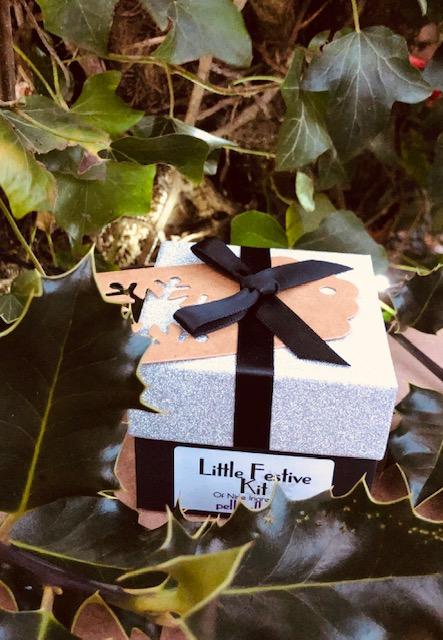 Little Festive Kit Product Image