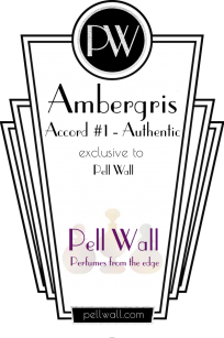 Ambergris Accord Number 1 Product Image